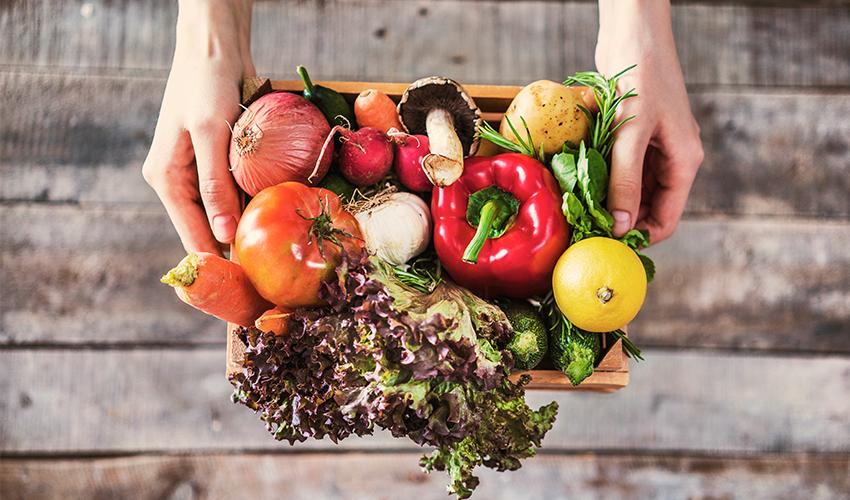 Alimentos sin lactosa para fortalecer las defensas