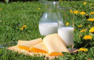 productos lácteos en jardín